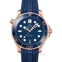 Omega Seamaster 210.62.42.20.03.001