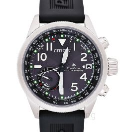 Citizen Promaster CC3060-10E