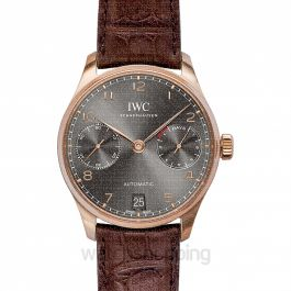 Portugieser Automatic Grey Dial Men's Watch