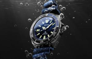 7 Best Dive Watches to Consider